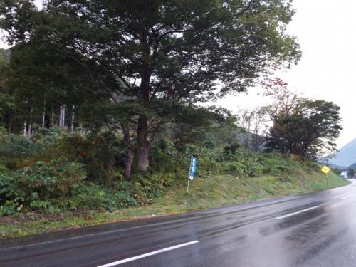 land-shirakawa02-1